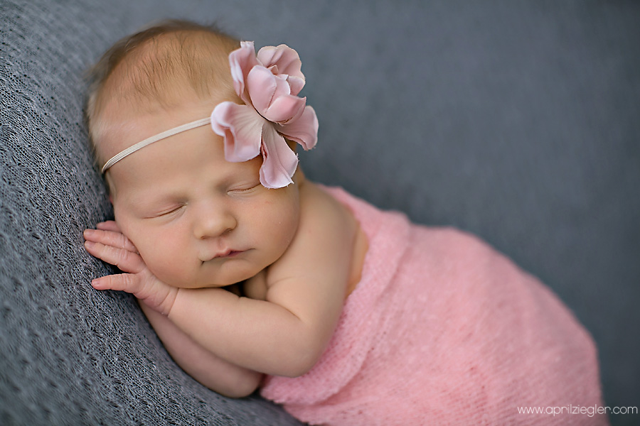 skippack baby photography