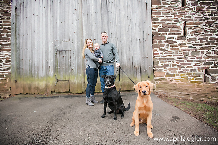 family photos with pets